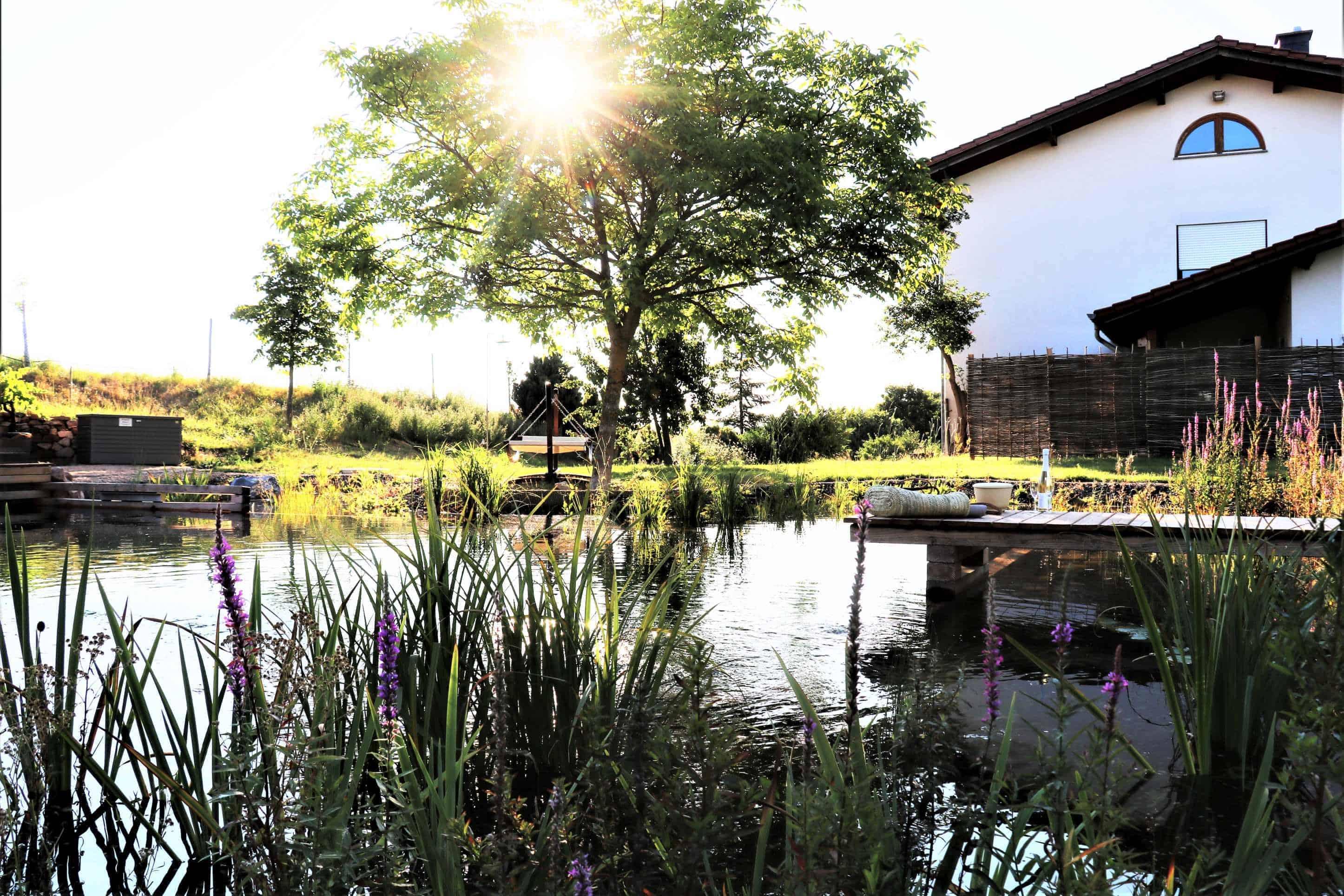Biolandhotel mit Naturteich